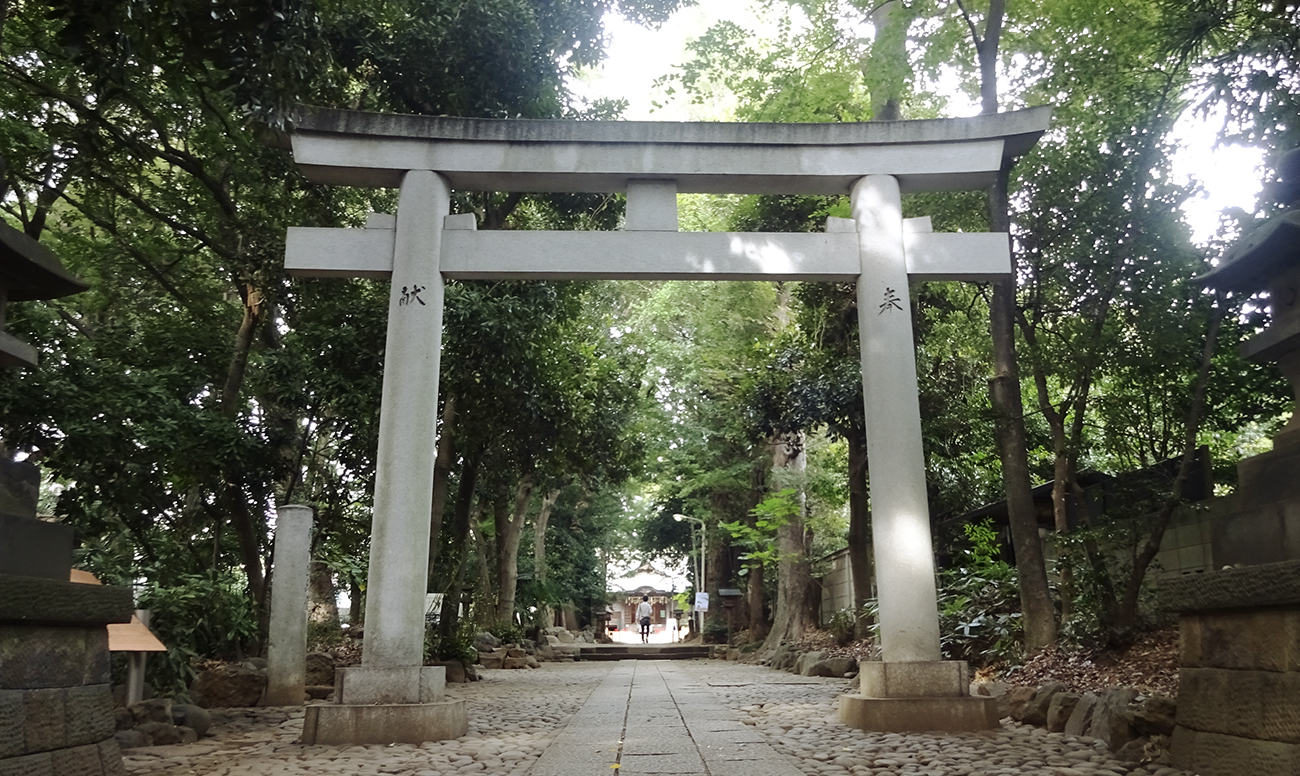 代々木八幡宮での挙式案内 | 神社結婚式プロデュース 京鐘