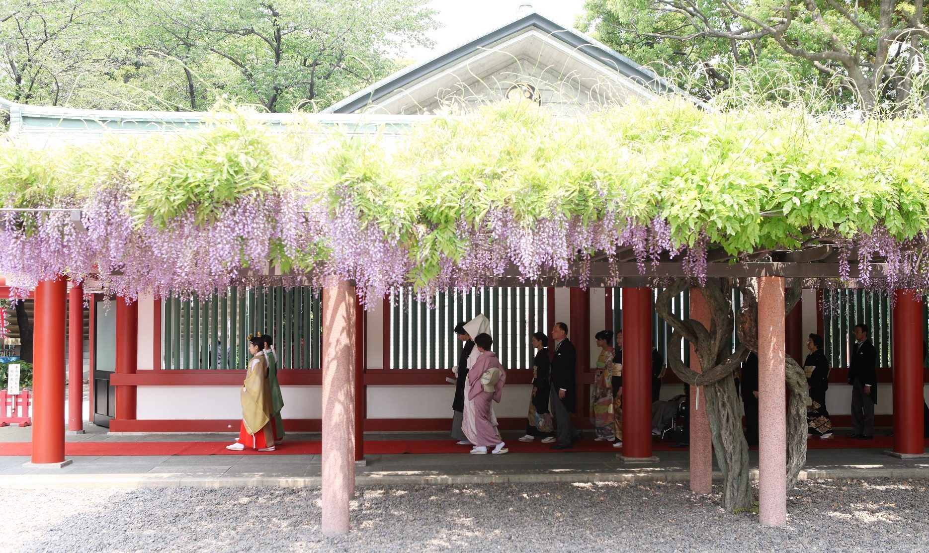 日枝神社での挙式案内 | 神社結婚式プロデュース 京鐘
