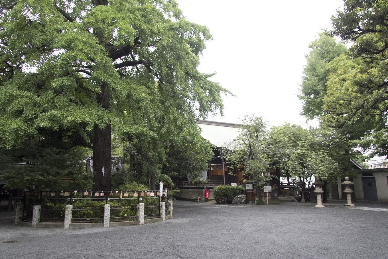 七社神社での挙式案内 | 神社結婚式プロデュース 京鐘