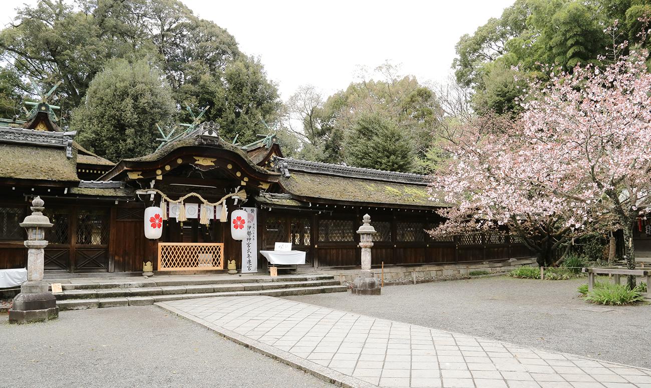 平野神社での挙式案内 | 神社結婚式プロデュース 京鐘