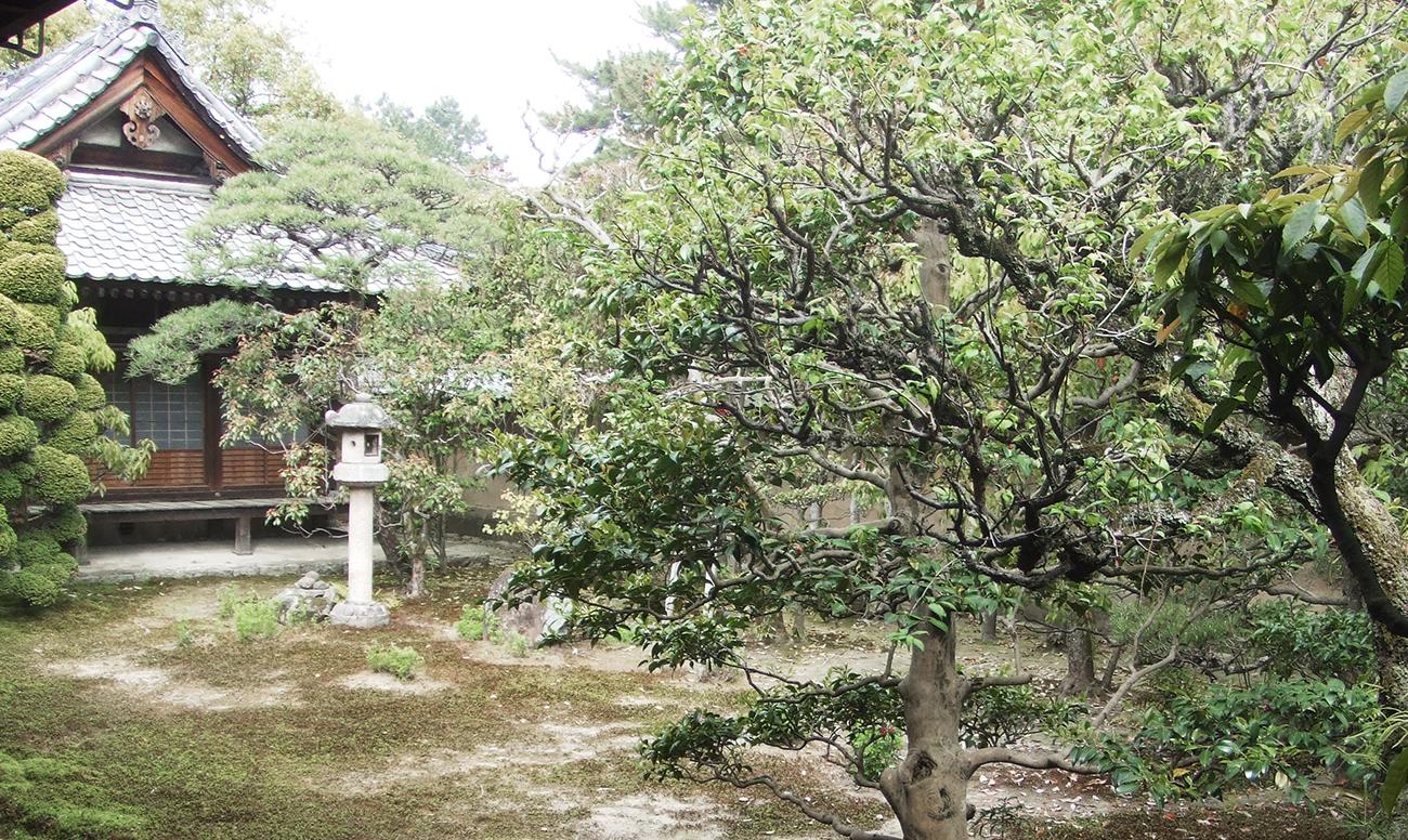 法相宗大本山 興福寺での挙式案内 | 結婚式プロデュース 京鐘