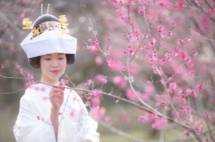 【京都店/特典付】北野天満宮 結婚式相談会フェア