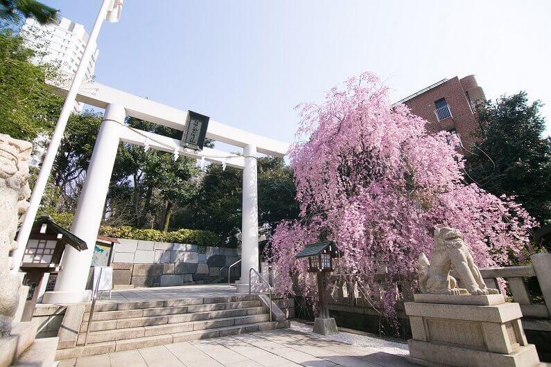 乃木神社【東京】
